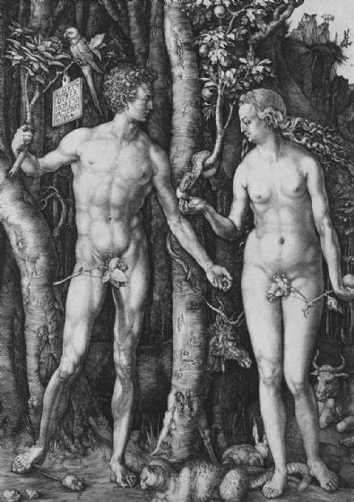 Durer, Albrecht: Adam and Eve. Fine Art Print/Poster. Sizes: A4/A3/A2/A1 (001919)